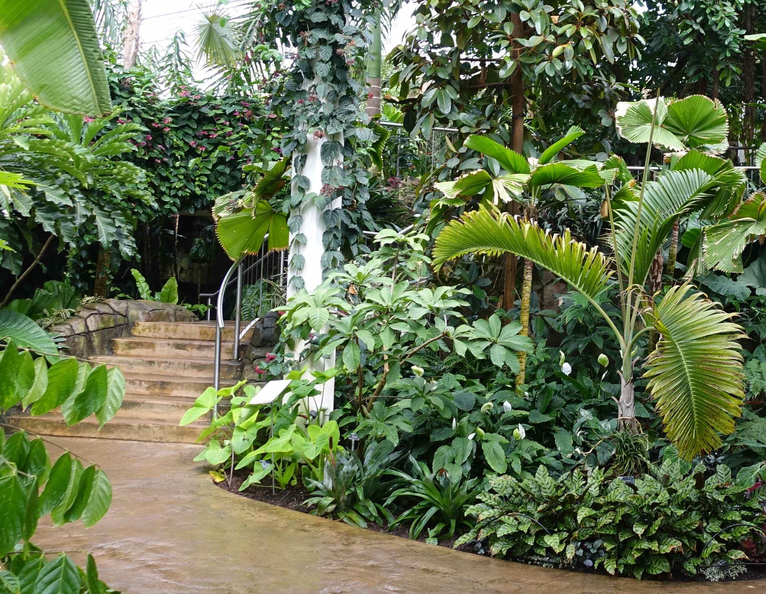 11 greenhouse interior