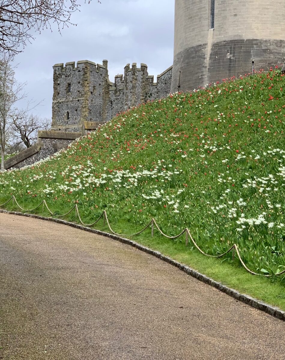 Arundel Castle Gardens the Keep