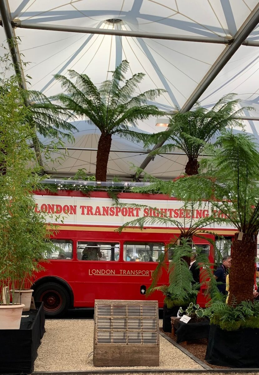 London bus at Chelsea